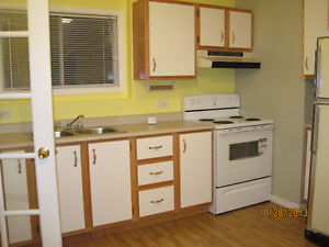 Bright 1 Bedroom in Paradise St. John's Newfoundland image 4