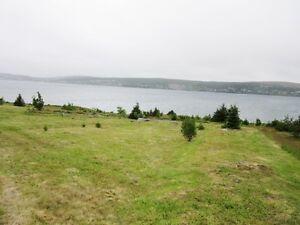 8B Menchions Lane - Bay Roberts, NL - MLS# 1133177 St. John's Newfoundland image 3