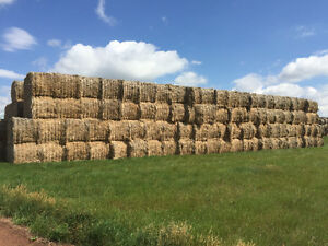 Flax Straw Bales for sale.