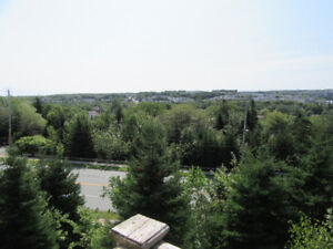 NEW LISTING! Want To Stop Renting? 2 Level Collins Grove Condo