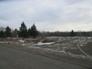 5.25 Acre Building Lot 277, Poleline Rd... w/well & hydro incl.