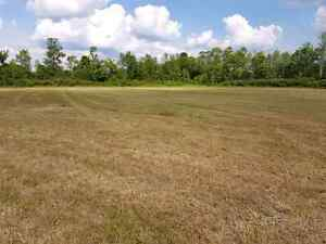40 Acres on County Road 6, 10 minutes to Cat Centre Kingston Kingston Area image 3