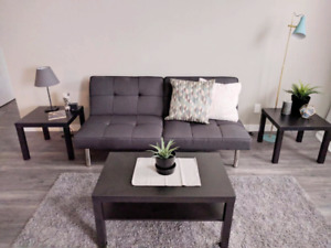 Furnished 2 Bedroom in Chatham (Utilities/Cable/Wifi Included)