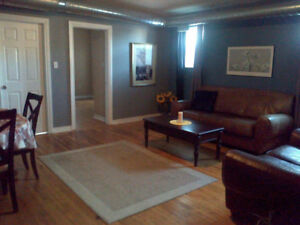 1 Bedrm. in 3 Bedrm. Lofts Apt. to Share with 2 Girls Feb. 1