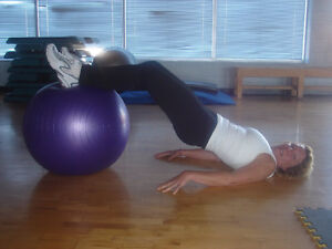 In Home Personal Training and Total Body Fitness Classes. Kitchener / Waterloo Kitchener Area image 1
