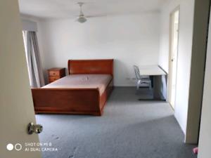 Carindale Master room for rent 220/week