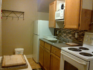 Quiet, Clean, Central, Furnished Bachelor for Rent - May 7