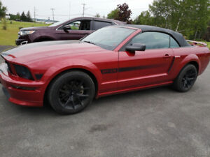 Ford Mustang 2008 California Gt Special