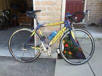 2002 Specialized Allez E5 Comp Festina Team bike