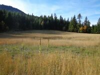gorgeous private 7 plus acres withing incredible views and well
