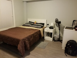 1 Bedroom Available May-Aug 2019, Close to UOIT/Durham
