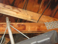 PROFESSIONAL ATTIC MOLD REMEDIATION AND CONSULTATION SERVICES