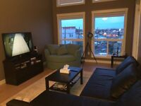 1 Bedroom For Rent - Whyte Ave