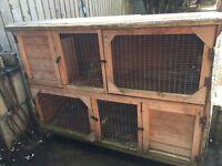 Rabbit / Guinea pig double hutch