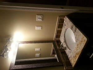 new basement own bathroom and kitchenette near nisku Edmonton Edmonton Area image 4