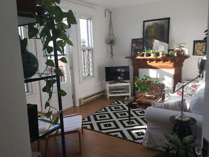 Gorgeous, bright, top-floor gem in Little Italy