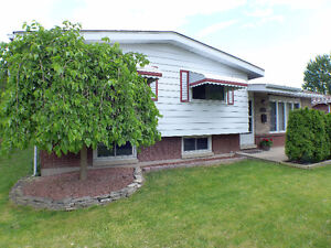 4 Level with In-Ground Pool in Amherstburg (113 Wilkinson)