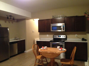 Beautiful & bright walk out basement suite for rent!