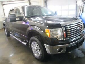 Ford F-150 SuperCrew 2010