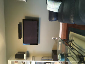 Pioneer plasma tv for sale