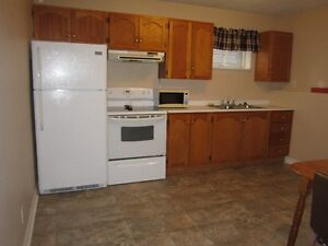 One bedroom apartment for rent St. John's Newfoundland image 1