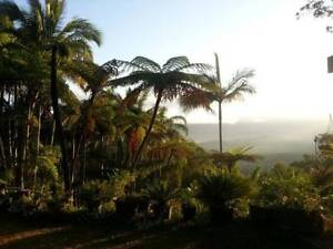 Land of the Gods Cooktown Cook Area Preview