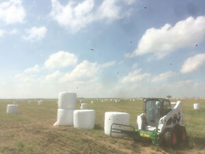 Silage and Hay bales for sale Moose Jaw Regina Area image 2