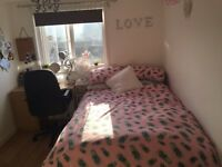 Student double room for rent, Upper Lewes Road, Brighton