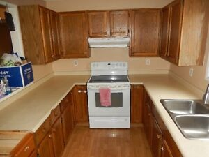 Kitchen cabinets/no countertops or sink/take all for $375.