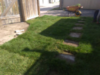 Now is the best time to install your new lawn! Call today