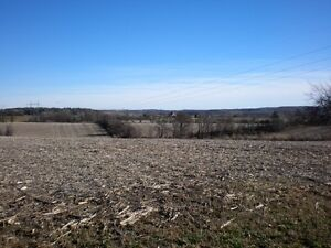 Acreage Buildable Hilltop Acreage with well
