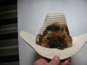 Cowboy Hat with feather