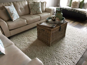 10.5x8ft off-white shag carpet