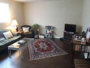 Roomate Wanted for Apartment at 441 Alexandra