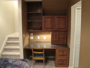 1 bedroom basement suite in leduc