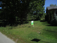 vacant property in beautiful cottage country