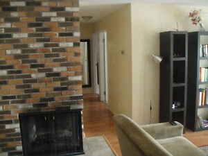 2 Bedroom beautiful condo for rent near downtown