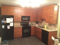 Whyte Ave, University Apartment for rent