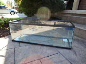 "Miracles Glass Aquarium or Terrarium -36""L x 12""W x12.75"" T Kitchener / Waterloo Kitchener Area image 1"