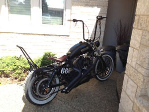 Harley 1200xl Low, Fast and Loud