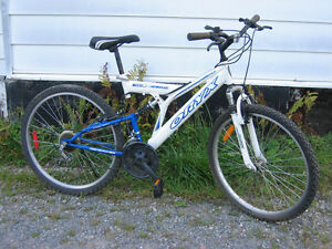 Oryx D S bicycle