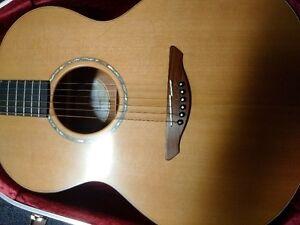avalon legacy series acoustic guitar