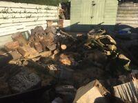 Chestnut logs