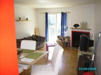 Chambre dans beau 6 1/2 ensoleillé sur le Plateau 11 au 31 juin