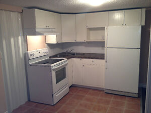 1 Bdrm LEGAL Bsmnt Suite in a house in Millwoods -Internet/Cable