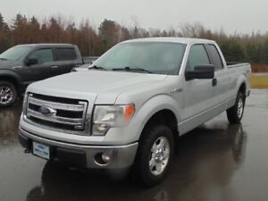 2013 Ford F150 XLT S/Cab