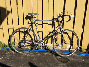 63cm XL Norco Avanti SL Sport