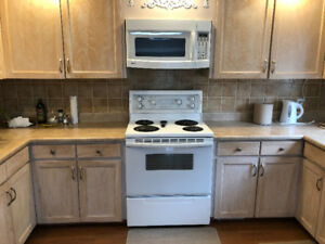 MUST LOOK Kitchen Appliances Oven +Fridge+ Microwave+ Dishwasher