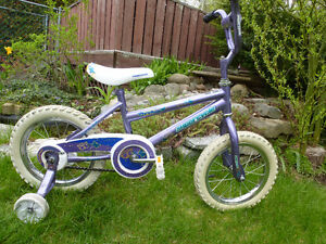 """Supercycle """"Dream"""" with training wheels and 14"""" tires"""