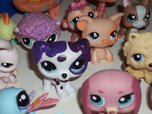 ONTARIO'S LARGEST SELECTION OF LITTLEST PET SHOPS London Ontario image 5